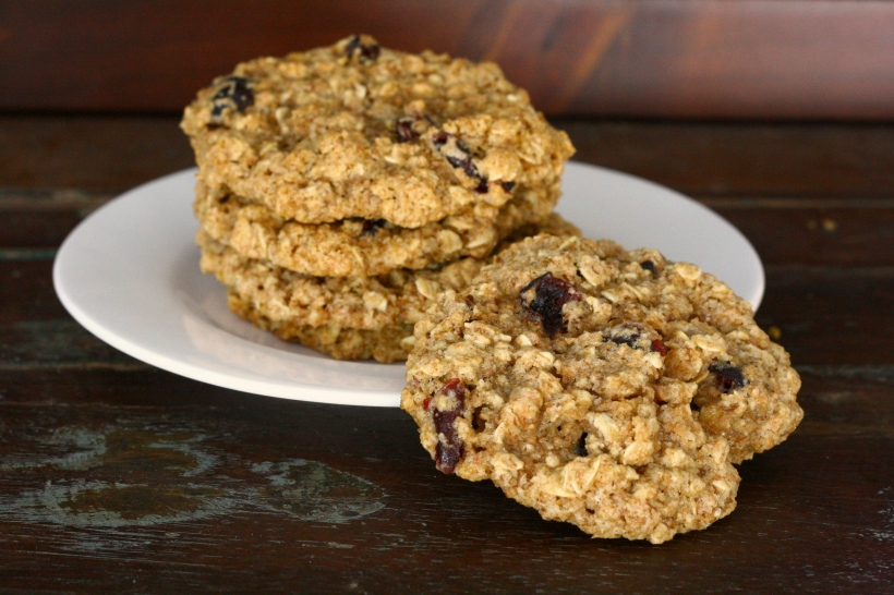 Healthy Oatmeal Craisin Cookies | doughseedough.net