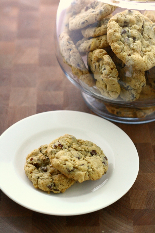 Oatmeal Pecan Chocolate Chip Cookies | doughseedough.net
