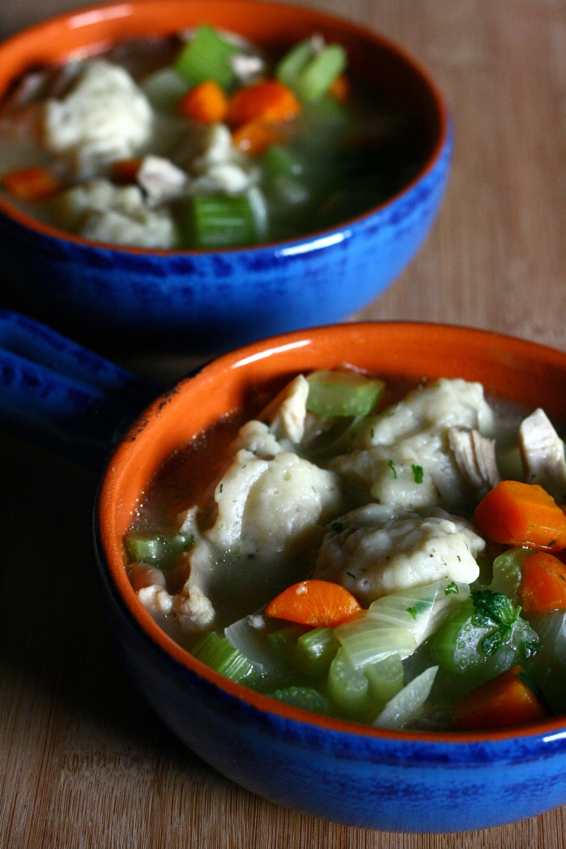 Chicken or Turkey Dumpling Soup | doughseedough.net