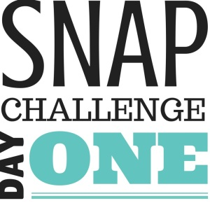 SNAP Challenge Day 1 | doughseedough.net