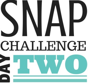 SNAP Challenge Day 2 | doughseedough.net