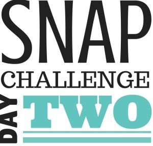 SNAP Challenge Day 2 | doughseedough.net