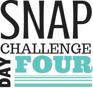SNAP Challenge Day 4 | doughseedough.net