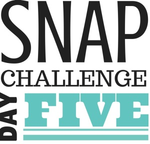 SNAP Challenge Day 5 | doughseedough.net
