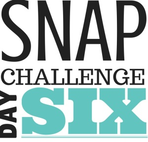 SNAP Challenge Day 6 | doughseedough.net