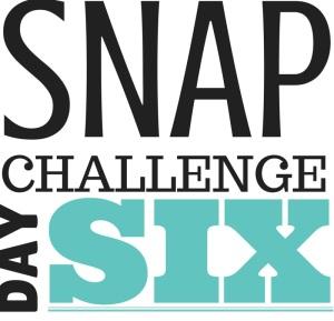 SNAP Challenge Day 6 | doughseedough.net