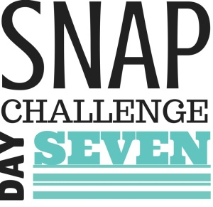 SNAP Challenge Day 7 | doughseedough.net